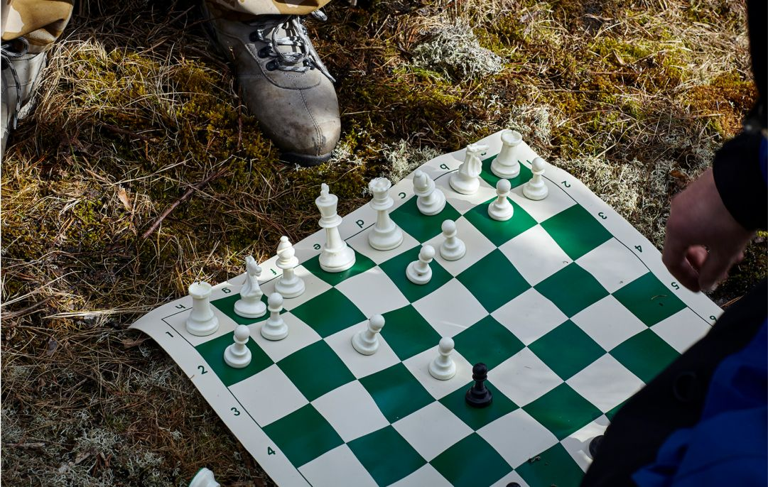 A fabric-based chessboard on some moss.